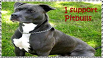 I support Pitbulls stamp by Nei-Ning