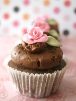 choc mud cuppie by ZaLita