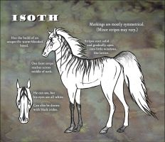 Isoth Reference Sheet by Wolvekit