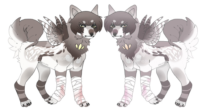 [CLOSED] P r e y - AUCTION by CuboneAdopts