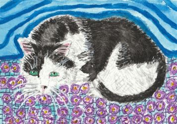 black and white cat watercolor  aceo painting by tulipteardrops