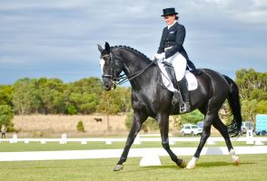 I love Dressage by EquusAustralia
