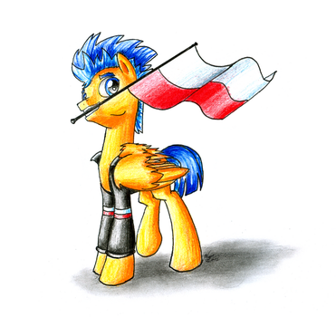 Flash Sentry On Polish Independence Day by NightPaint12