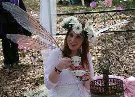Fairy 2 Elf Fantasy Fair 2010 by lilam70