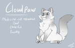 Cloudpaw ref by kerorolover16