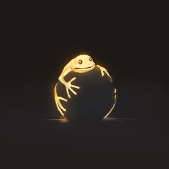 Frog by Lollo