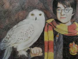 Harry Potter and Hedwig by Daphneexx96