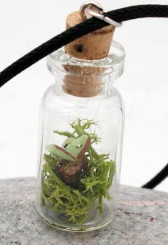 Woodland walks Luna Moth vial pendant by Xerces