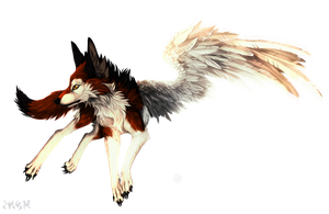 C: Wing-EDITION by Snow-Body