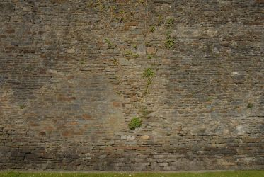 Caerphilly Castle Texture HQ04 by TomatoSource