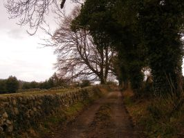 Country Lane 01 by Axy-stock