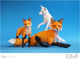 Fox 1 by leo3dmodels