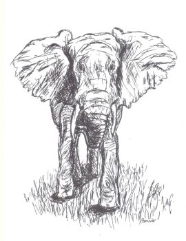 Penned Pachyderm by TheQueenOfFools