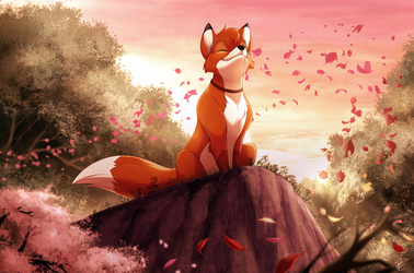 Com: Colors of the...Fox? by Seyumei