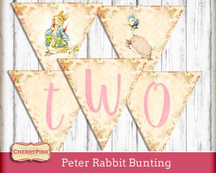 Peter Rabbit Decorations by miabumbag
