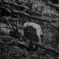 The Silence of Root II by RapidHeartMovement