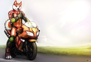 Going for a ride ? by Shalinka