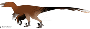 Dakota raptor by zavraan