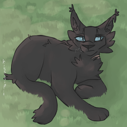 Crowfeather by hissisipi