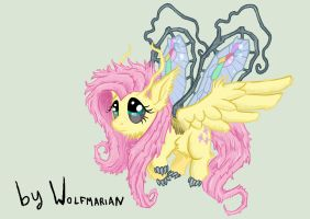 Rainbow Power Fluttershy. My Version by wolfmarian