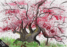 Cherry Blossom watercolor by SulaimanDoodle