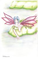 Memoirs Of a Fairy by Tyora