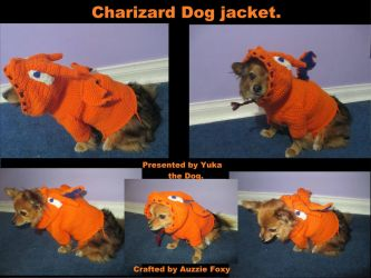 Charizard Crochet dog Jacket by Auzzie-Foxy