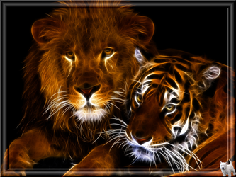 Lion and Tiger by polypheme64