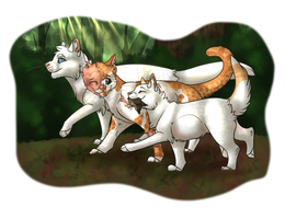 Warriors Family Contest Entry by Ribbon-Wren