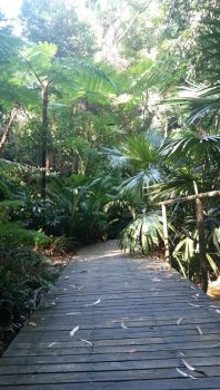 Botanical Gardens Stock2 by SeaHeartStables