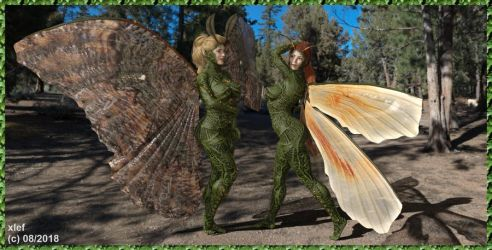 Insect Girls by xlef