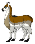 How I Draw A: Llama (request) by horse14t