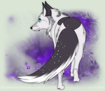 The Stars Are In My Tail by Bandarai