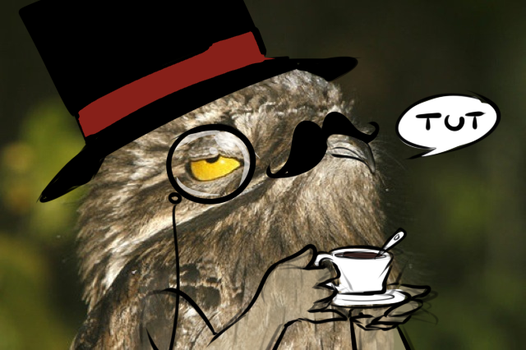 Mr. potoo is not amused by secret-pony