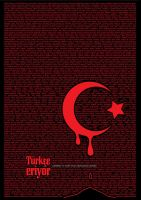 Turkce Eriyor by korpsemessiah