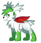 Favorite Grass Pokemon : Shaymin Sky Form by Dragonqueen316AJ