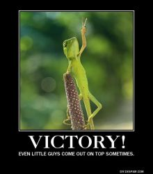 Victory! by Freyad-Dryden