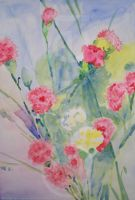 Red and White Carnations (2013) by stefonthesea