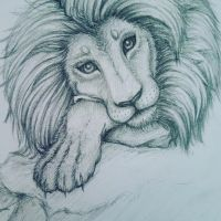 Second time drawing a Lion by kirushadow