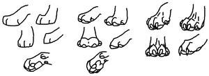 Canine Paws by HuntingPeople