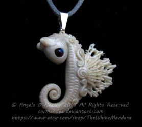 Little White Sea Horse by carmendee