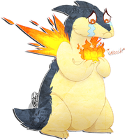 Typhlosion's fashion disaster by MATicDesignS