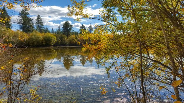 Fall Time in Fintry by jewelslove