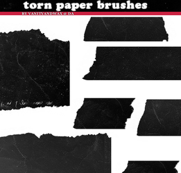 Brush Set: Torn Ancient Paper by vanityandwax