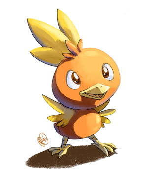 Torchic by ReenK