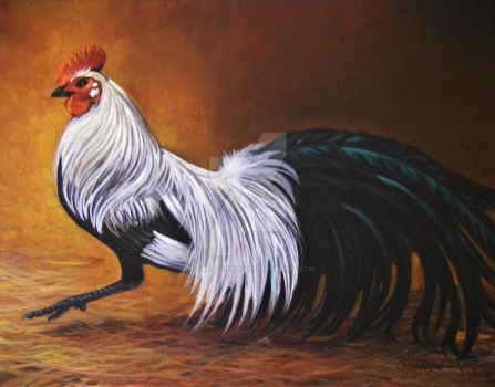Sally Lickeys Beautiful Rooster by HouseofChabrier
