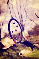dreamcatcher by TwigsCorner