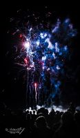 The beauty of fireworks by aradosman