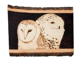Owls Woodburning by EdgedFeather