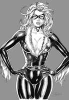 Black Cat by B-Richards
